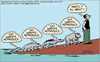 evolution_cartoon_More_funny_Evolution_pics-s580x362-51748-580